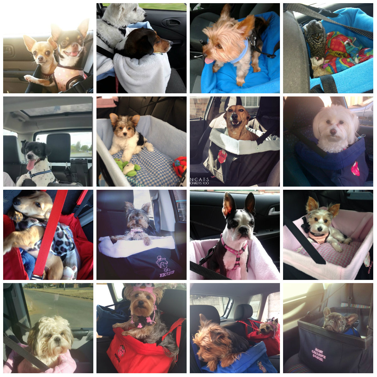 car booster seat collage
